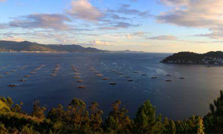 Galicia, Terra Meiga