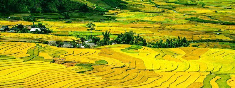 Fascinante Vietnam