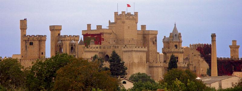 Castillos y Monasterios desde Castejón